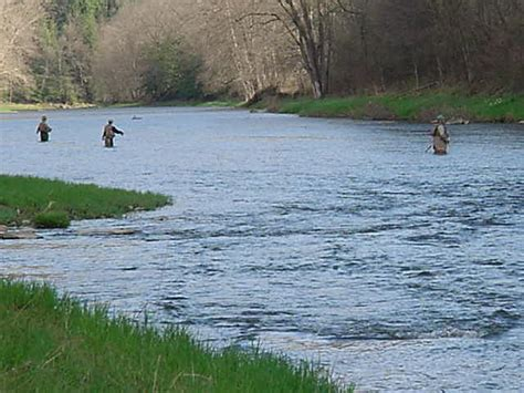 Pa Fish And Boat Delayed Harvest by Fishing In Creek State Park