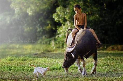 gambar viral syukur khamis kampung boy mukabuku viral