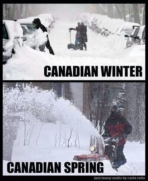 Canada Snow Meme - 390 best images about canadian jokes on pinterest canada in canada and humor