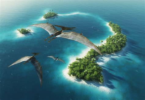 birds island free vector graphic download