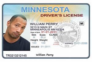 nice florida drivers license template photos resume With florida drivers license template