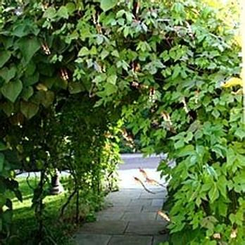 786 church road wayne pa chanticleer foundation 133 photos 22 reviews botanical gardens 786 church rd wayne pa