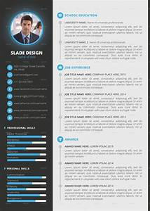 Template professional cv cv templates sample template for Reseume template