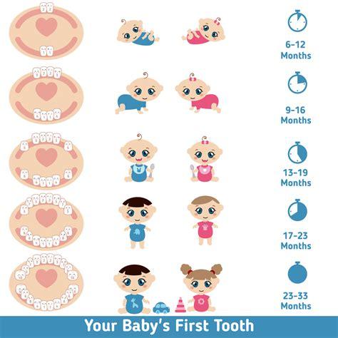 Baby Teething Chart Baba E Pinterest Teething Chart