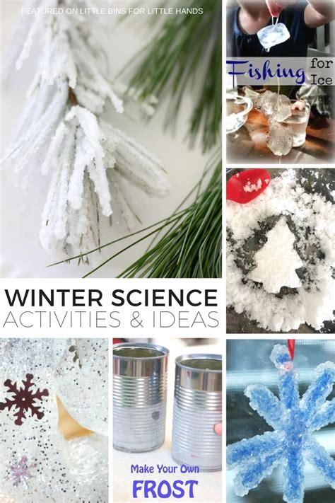 polar bear blubber science experiment  kids winter science