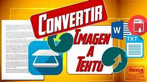 Convertir, Imagen, A, Texto, Word, Pdf, Txt