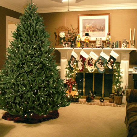 Tell Me Why The World Is Weird The Future Of Christmas Trees