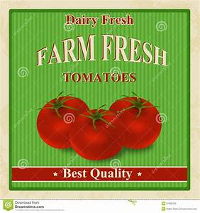 Vintage Farm Fresh Tomatoes Poster Stock Photo - Image ...