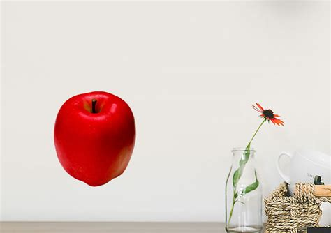 Single Red Apple Kitchen Printed Wall Sticker