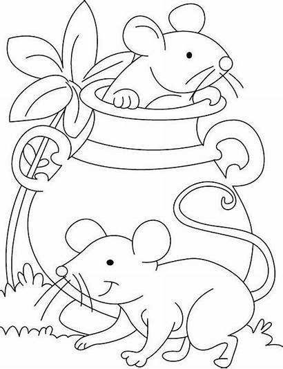 Coloring Mouse Pages Colouring Mice Hide Animal