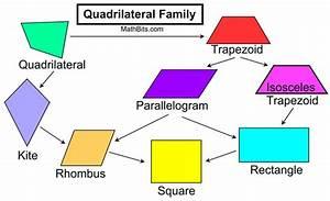 Schematic Diagram Quadrilateral