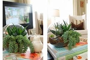 Terrarium Plante Deco : un terrarium de plantes magnifique pour votre maison ~ Dode.kayakingforconservation.com Idées de Décoration