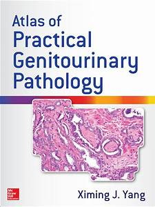 Atlas Of Practical Genitourinary Pathology  Ebook