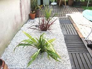 plante pour terrasse homeandgarden With idee deco terrasse zen