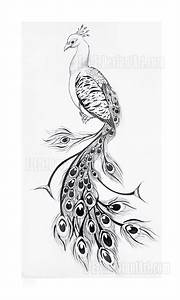 864a01e0f Images of Peacock Drawing Tattoo - #Summer