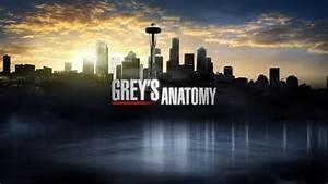 Grey's Anatomy 8 (Foto) | Televisionando