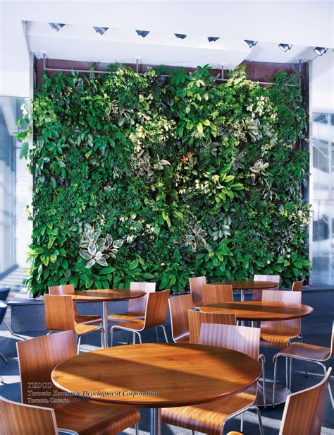 Vertical Garden Maintenance by A Guide To Vertical Garden Maintenance Land8