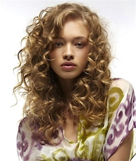 classy natural curly hairstyles circletrest