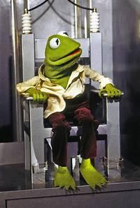 Nasty Kermit Quotes. QuotesGram