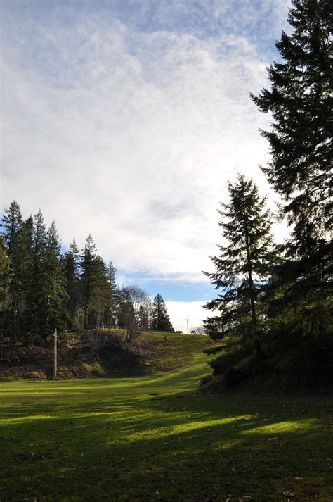 Forest Park   Year of Seattle Parks