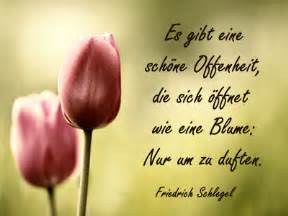 http www gedichte danke sprueche net dank gedicht bilder eltern spruch schlegel jpg pruch - Sprüche Für Eltern Danke