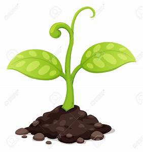 Soil plant clipart - Clipground