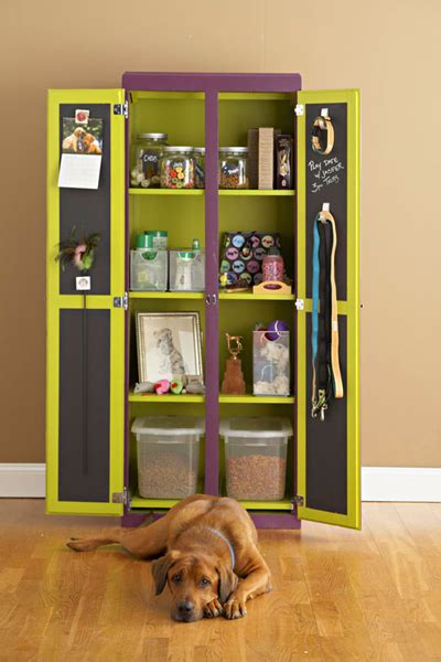 creative storage ideas  pets stuff shelterness