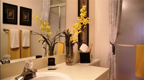 Decorating Ideas For Small Bathrooms In Apartments by Inside The Best Apartment Bathroom Decorating Ideas