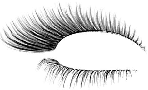 eyelash template eyelash photoshop template designs