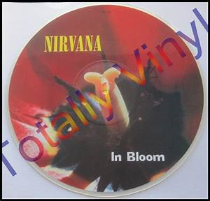 Totally Vinyl Records    Nirvana - In bloom (LP version ...