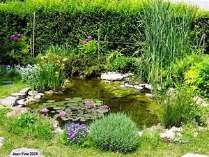 agrandir bassin de jardin page 1 With photo de bassin de jardin