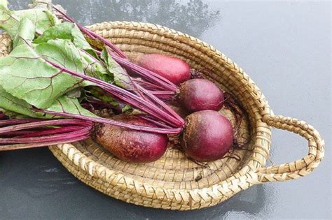 beets urine color urine color and its meaning in health and in disease