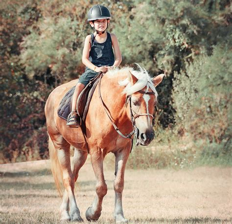 riding horseback shutterstock nyc offer courtesy photograph york
