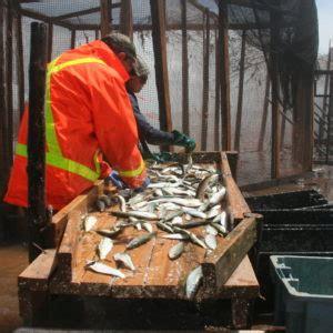 fishing gear types seachoice