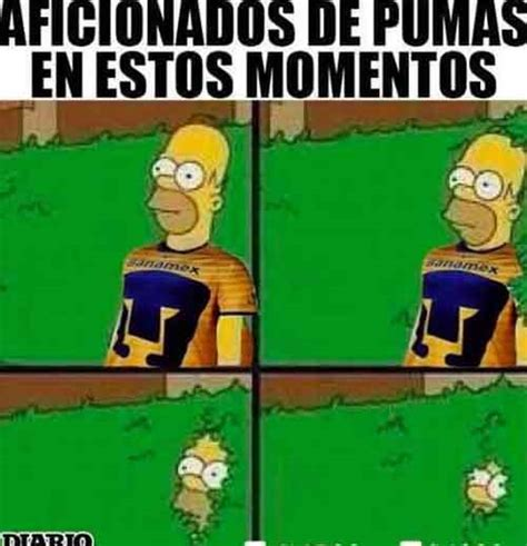 Pumas Vs America Memes - los mejores memes am 233 rica vs pumas apertura 2016