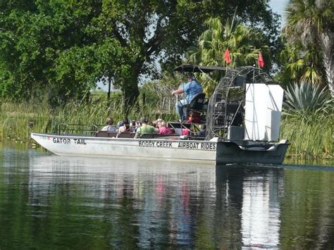 Airboat John Orlando by Gator Spotting In Orlando With Boggy Creek Airboats