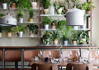 Restaurant Garden Indoor Danish Studio Plants Creates