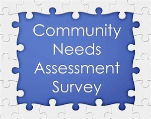 health needs assessment essay