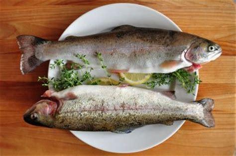 eat  fish australian bishops  year  friday