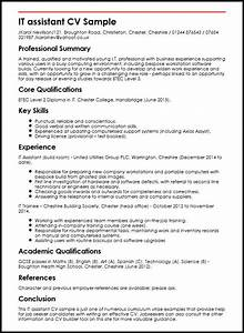 it assistant cv sample myperfectcv With curriculum vitae example