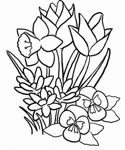 coloring pages of flowers and butterflies - Gianfreda.net