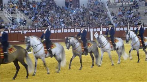 andalusian horses dance