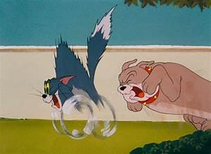 Tom Jerry : tom and jerry pictures ~ Watch28wear.com Haus und Dekorationen