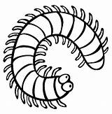 Coloring Millipede Centipede Colouring Insect Pages Clipart Sheets Centipedes Cartoon Insects Animals Millipedes Printable Colour Animal Bug Sheet Mini Milipede sketch template