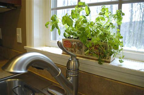 kitchen herb garden ideas archives living rich