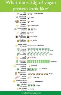 Vegetarian Protein Sources Chart