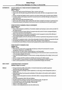 Resume Sample Marketing Web Content Coordinator Resume Samples Velvet Jobs