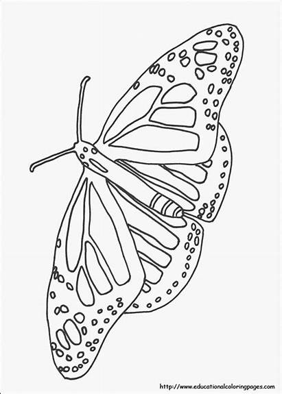 Coloring Nature Pages Printable Adult Preschoolers Easy