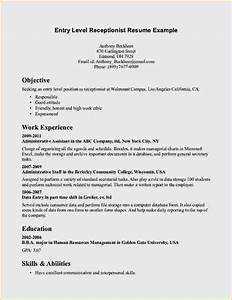 entry level resume objective examples resume template With example of resume letter
