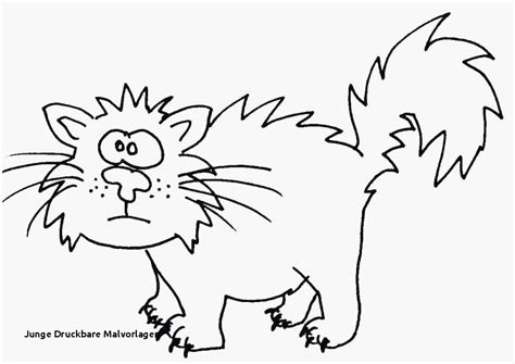 ausmalbilder tiere katzen malvorlage katze ausmalbilder